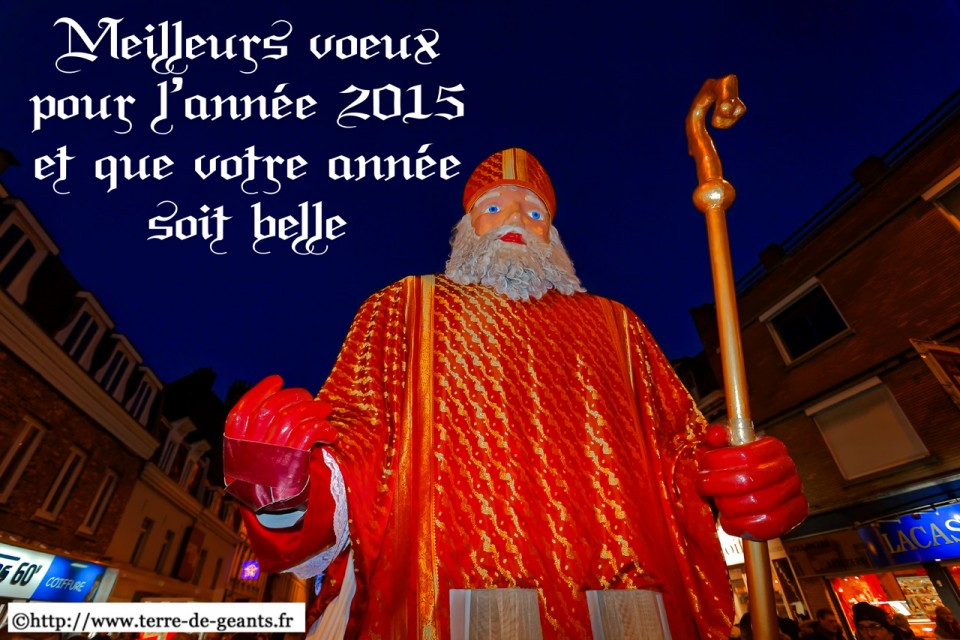 Voeux2015